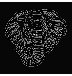 head of elephant white outline on black background vector image