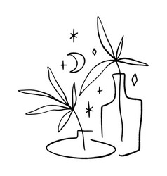 Line art plant in pot contour drawing vector