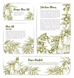 Olive oil extra virgin product templates vector