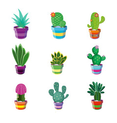 set of different cacti vector image