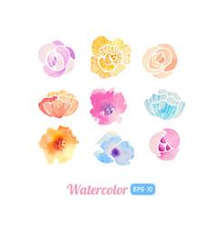 set watercolor floral elements vector image