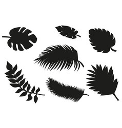 tropical palm tree grunge leaves set elements vector image