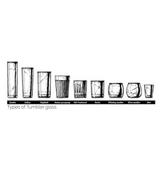 tumbler glass types vector image