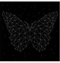 abstract butterfly of lines and dots vector image