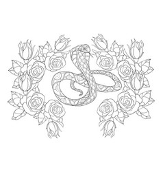 adult coloring bookpage a cute snake image for vector image