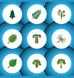 Flat icon ecology set of wood alder acacia leaf vector