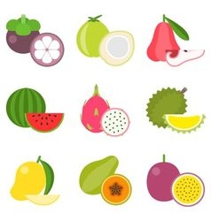 Fruit icons set 2 vector image