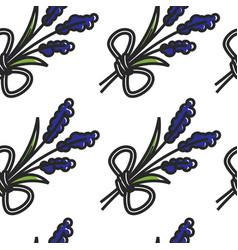 lavender flower seamless pattern plant montenegrin vector image