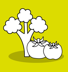 Silhouette broccoli and tomatoes vegetables icon vector