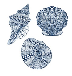 Zentangle stylized set blue seashells Hand Drawn vector