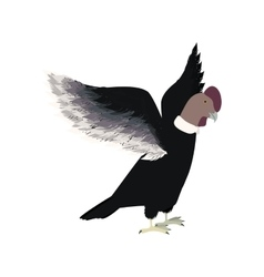 Condor animal bird icon with opened wings vector