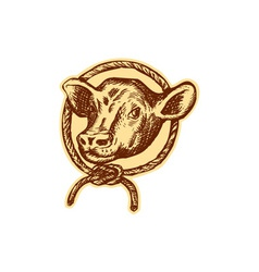 Cow Bull Head Rope Circle Etching vector image vector image