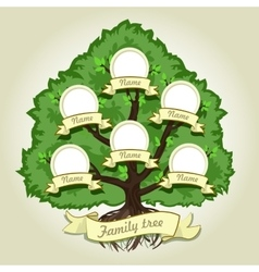 Genealogical family tree on gray background vector image