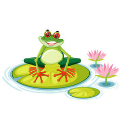A red eyed tree frog on lily pad vector