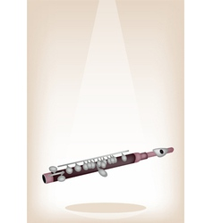 A Symphonic Piccolo on Brown Stage Background vector image