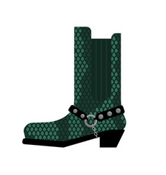 Cowboy boots made python leather australia shoes vector