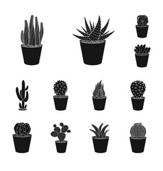 design of cactus and pot logo set of vector image