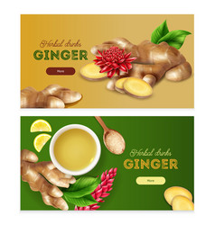 Ginger realistic banners vector