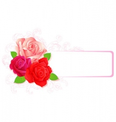 roses banner card vector image