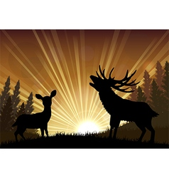 Silhouette a kangaroo and deer the standing vector image