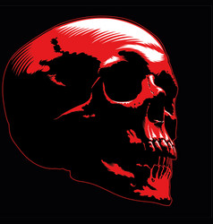 skull image red vector image