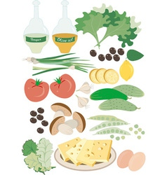 Wholesome food Salad vector image