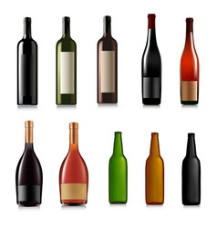 set of different bottles vector image