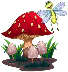 A dragonfly flying beside the mushrooms vector image