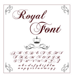 Font typeface script typeface for labels and vector
