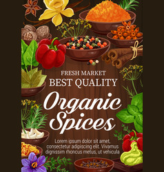 Spices and herbs on wooden background vector