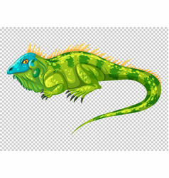 wild lizard on transparent background vector image