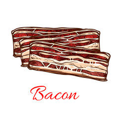 bacon sketch with stripes of pork meat vector image