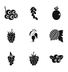 natural berries icon set simple style vector image vector image