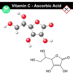 Ascorbic acid vitamin c vector