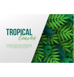 banner with exotic jungle tropical palm leaves vector image
