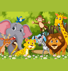 Group of animals in jungle vector