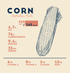 Health benefits of corn vector