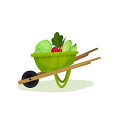 ripe and fresh vegetables in green garden cart vector image