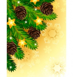 pine branches vector image