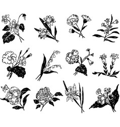 A set different stylized drawn flowers vector