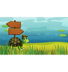 A turtle near the wooden arrow boards vector image vector image