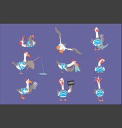 cartoon seagulls with different poses and emotions vector image