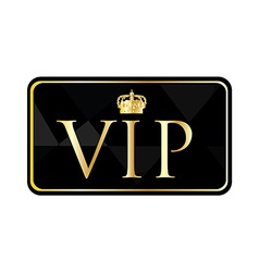Golden vip pass vector image