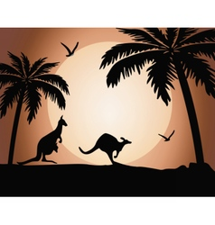 Kangaroo silhouette on sunset vector