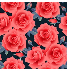 rose pattern night vector image