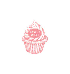 valentines day cupcake greeting card or poster vector image