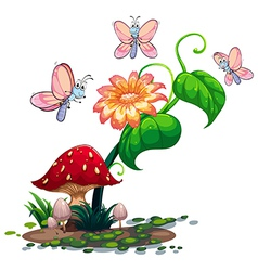 A blooming flower surrounded with three vector image