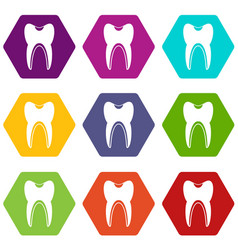 tooth icon set color hexahedron vector image vector image