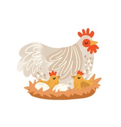 Cute hen on nest with eggs and hatched chickens vector