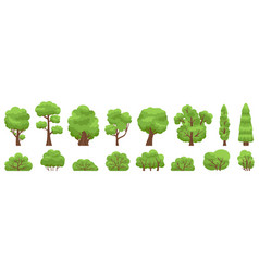 green trees forest or garden bush and tree woody vector image